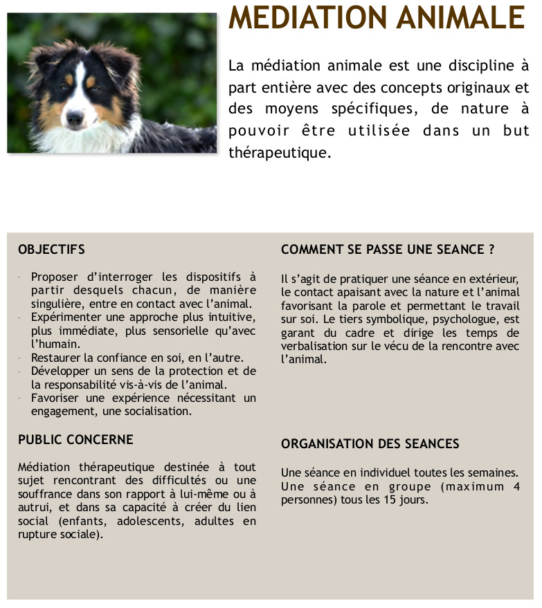 2016-AFFICHE MEDIATION ANIMALE